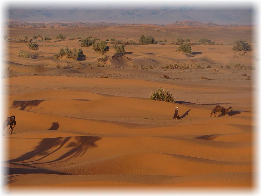 Erg Chegaga, Sahara.